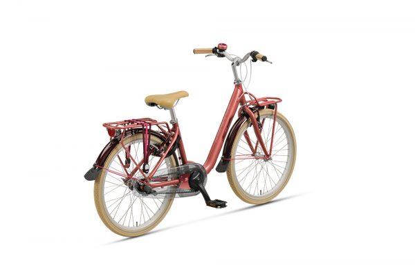 Noorderlicht fietsverhuur – Batavus Star – 22 inch – achterzijde